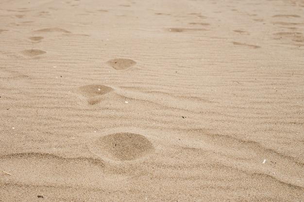 Limpe a areia da praia no mar durante o dia