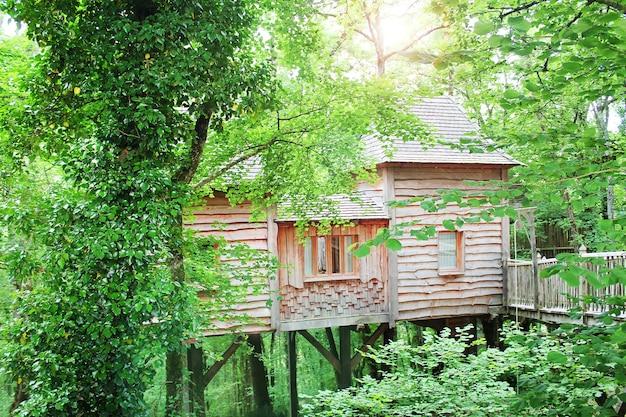 Linda casa de madeira no topo da árvore