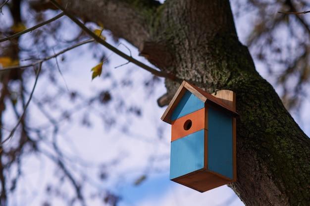 Linda casa de passarinho multicolorida no parque.