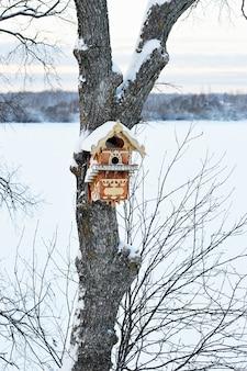 Linda casa de passarinho na árvore