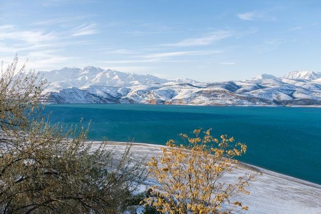 Linda charvak em um dia de neve de inverno no uzbequistão