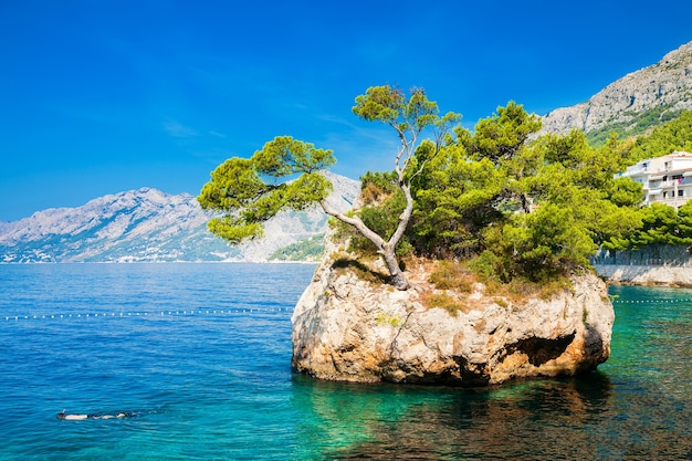 Linda e famosa rocha de brela perto da praia de punta rata, makarska riviera, croácia
