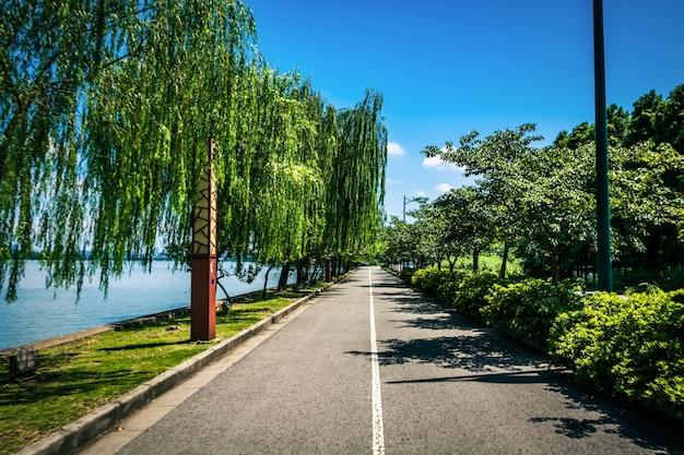 Linda estrada Foto gratuita