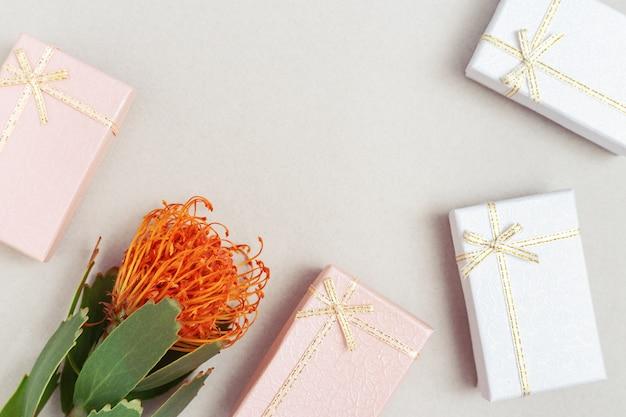 Linda flor leucospermum e caixas de presente fechadas ao redor. presentes e flor exótica de close-up. fronteira de férias e comemoração com espaço de cópia.