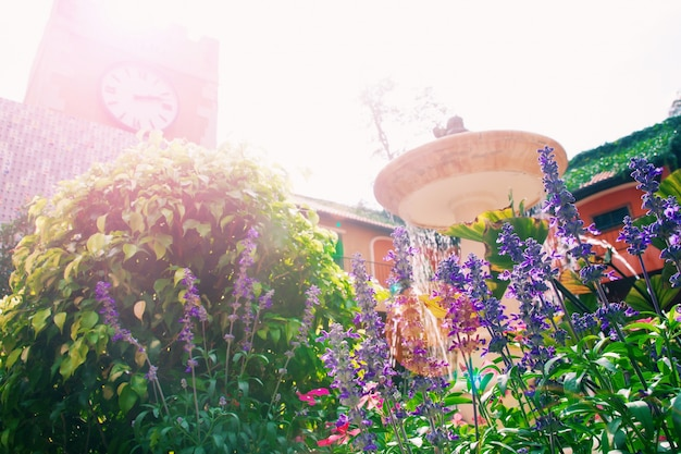 Linda flor no jardim