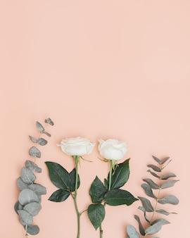 Linda flor rosa branca com ramo de eucalipto conceito de férias fundo da natureza tendências de cor