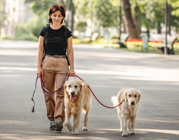 Linda garota andando com cães golden retriever no parque. mulher jovem e dois bichinhos cachorrinhos ao ar livre no verão