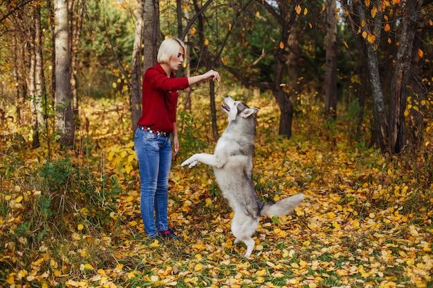 Linda garota caucasiana brinca com cão husky na floresta de outono