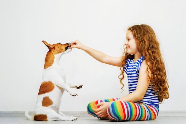 Linda garota com jogar seu cachorro jack russel terrier.