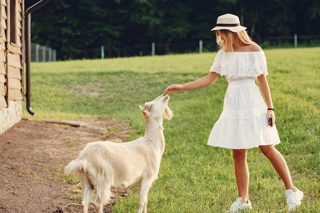 Linda garota em um campo com uma cabras