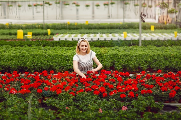 Linda garota sorridente, trabalhador com flores em estufa