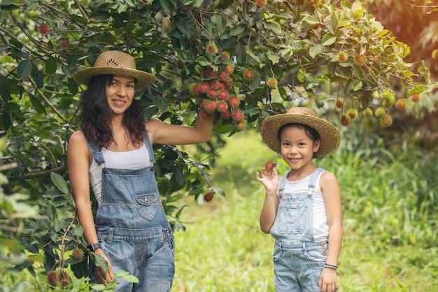 Linda mãe asiática e filha no jardim de frutas agrícolas do rambutan. pessoas de férias viajam conceito de natureza.