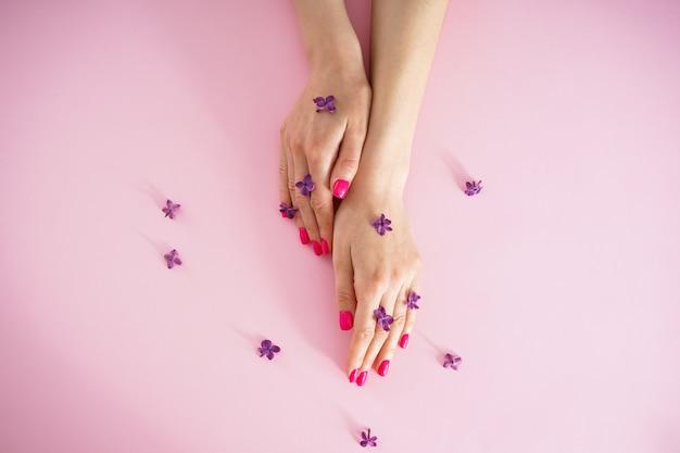 Linda manicure. vista do topo. mãos de mulher bonita e flores lilás em um fundo rosa, plano leigo.