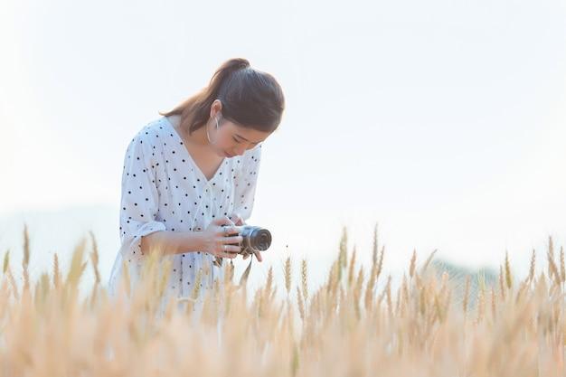Linda mulher asiática tirando foto e relaxante no campo de cevada no verão na hora por do sol