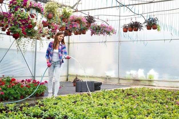 Linda mulher florista com mangueira regando flores em vasos na estufa do viveiro de plantas e mantendo-as vivas e frescas para venda
