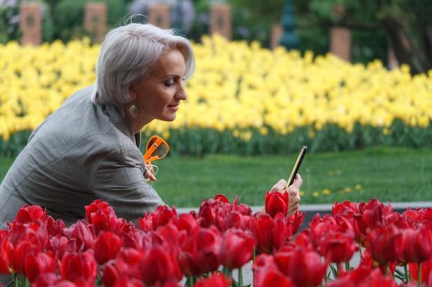 Linda mulher loira madura fotografa canteiro de flores com tulipas primavera, foco seletivo