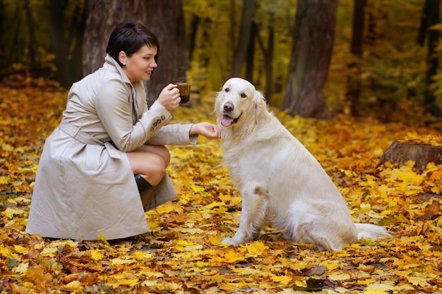 Linda mulher morena tem pausa para o café em caminhar com golden retriever no parque outono.