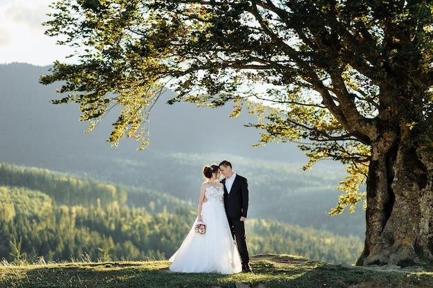 Linda noiva e noivo nas montanhas