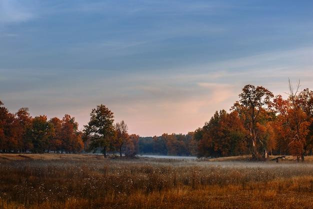 Linda paisagem de outono