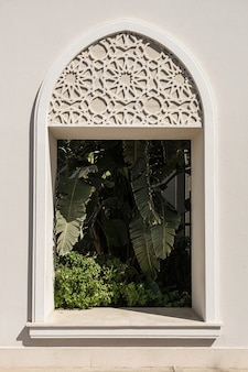 Linda palmeira tropical na janela do prédio bege com sombras de luz solar.