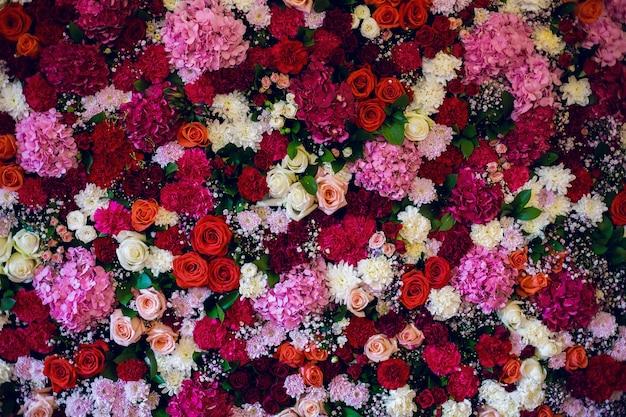 Linda parede feita de flores roxas violetas vermelhas, rosas, tulipas,
