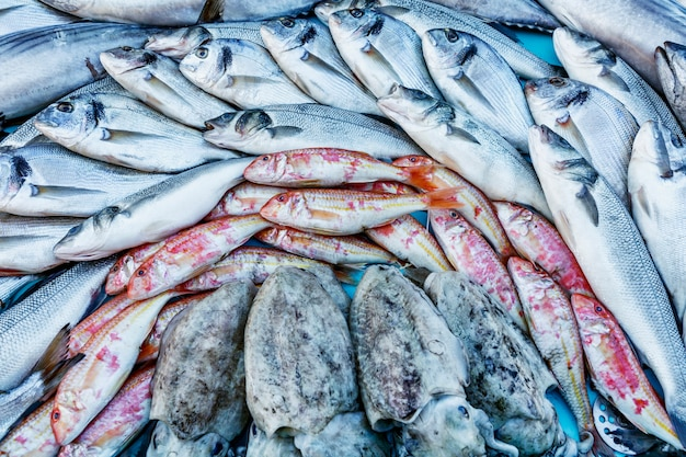 Lindamente disposto no balcão é uma captura de peixe fresco.