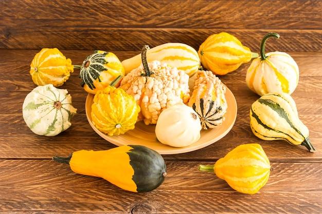 Lindas abóboras decorativas em uma bandeja e uma mesa de madeira. outono ainda vida.