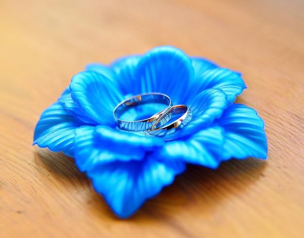 Lindas alianças de casamento estão sobre a flor