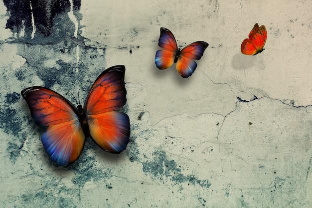 Lindas borboletas na superfície da parede da granja