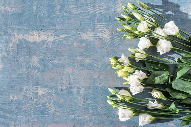 Lindas flores brancas eustoma. delicadas rosas pequenas brancas sobre fundo azul de madeira, copie o espaço.