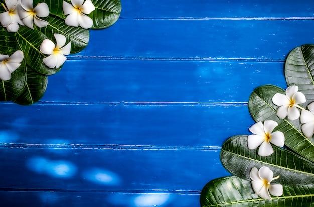 Lindas flores brancas sobre fundo azul de madeira