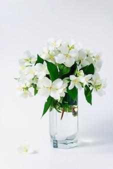 Lindas flores de jasmim em um vaso na mesa
