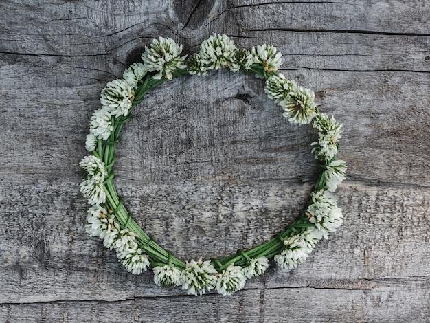 Lindas flores de trevo deitado sobre as placas