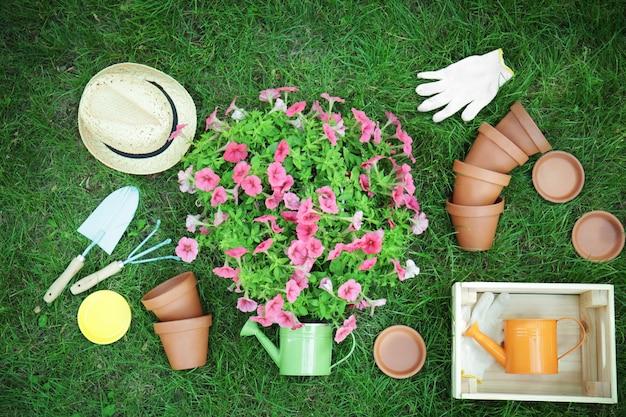 Lindas flores e ferramentas de jardinagem em gramado verde