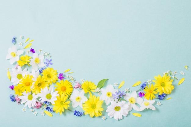 Lindas flores em fundo de papel azul