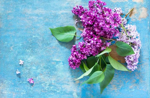 Lindas flores frescas de violeta lilás sobre fundo azul de madeira.