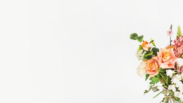 Lindas flores frescas em fundo branco