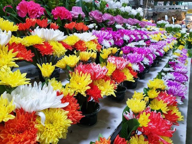 Lindas flores multicoloridas para decoração em um vaso no mercado de flores