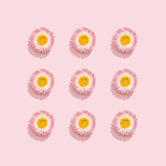 Lindas flores secas, pequenas flores