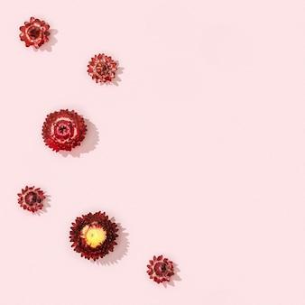 Lindas flores secas vermelhas, pequenas flores em rosa suave.