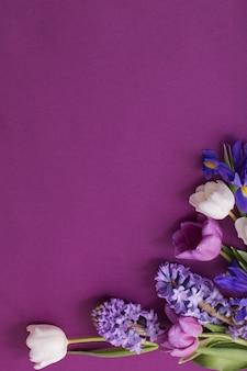 Lindas flores sobre fundo de papel
