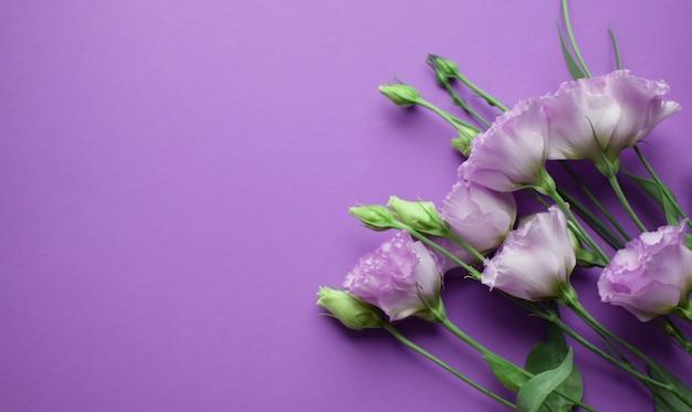 Lindas flores violetas eustoma (lisianthus) em plena floração com folhas de botões. buquê de flores sobre fundo lilás. copie o espaço