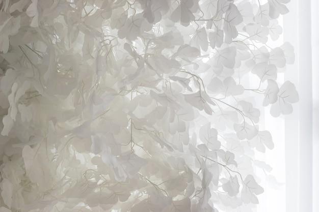 Lindas folhas brancas contra as cortinas de tule. fundo.