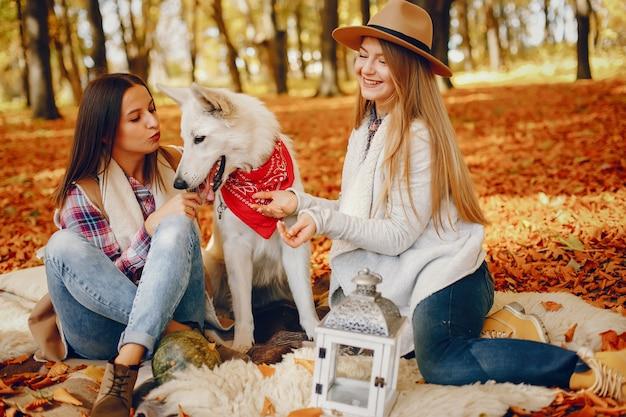 Lindas garotas se divertem em um parque de outono