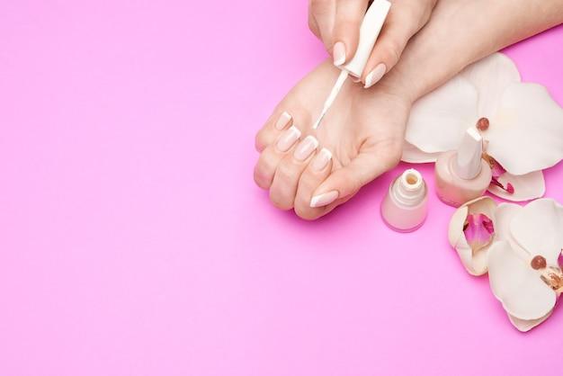Lindas mãos femininas com manicure francesa sobre superfície colorida rosa