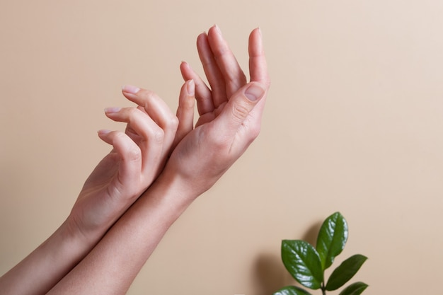 Lindas mãos femininas em uma superfície bege com folhas verdes