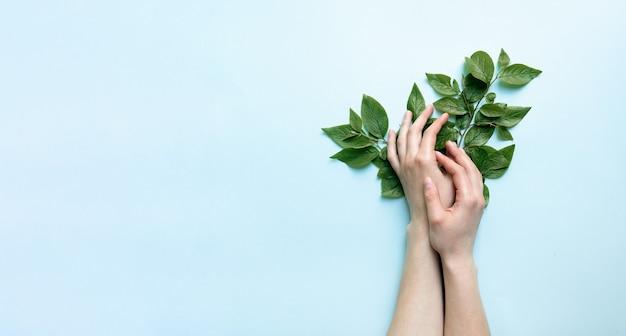 Lindas mãos tenras femininas seguram flores sobre um fundo azul celeste brilhante. o conceito de cuidado das mãos e respeito pela natureza.
