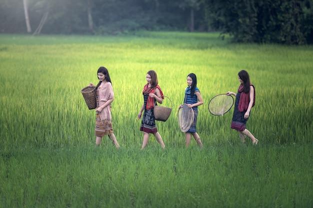 Lindas mulheres locais tailandesas feliz trabalhando ao ar livre, tailândia