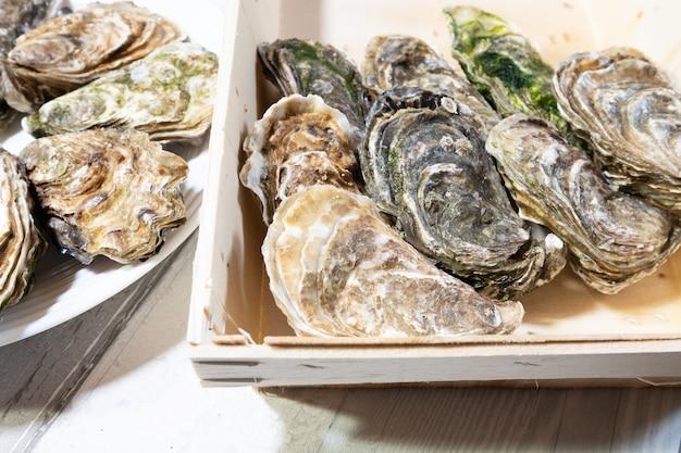 Lindas ostras frescas da bretanha ou normandia na frança