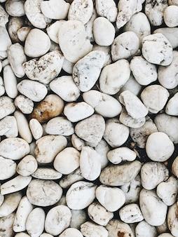 Lindas pedras e pedras brancas. bela textura e padrão
